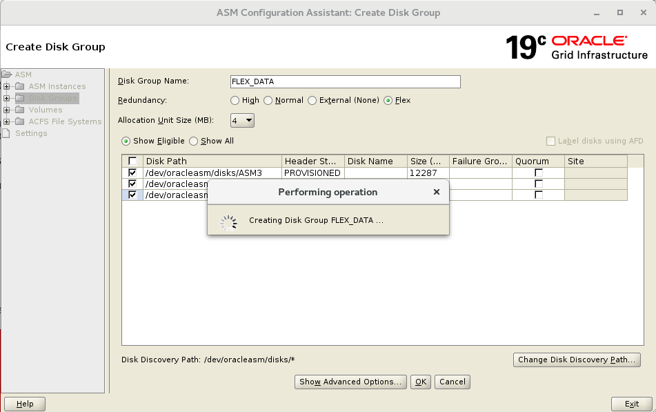 ASM Flex Disk Groups, Quota Groups and ASM Split Mirror Cloning